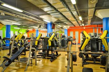 Физкультурно-оздоровительное сооружение: ALEX FITNESS