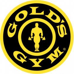 Спортивный зал: Gold's Gym Dinamo