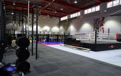 Физкультурно-оздоровительное сооружение: Палестра Спорт